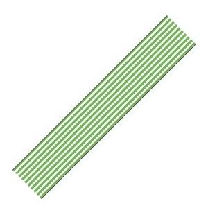 mt CASA 10 cm border green