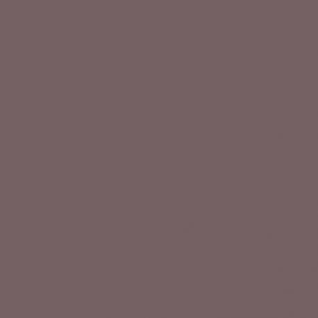 Fleur paint Chocolate blush 130 ml