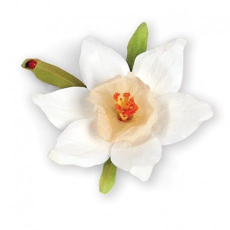 Troqueles Thinlits Flor Narciso Blanco Sizzix